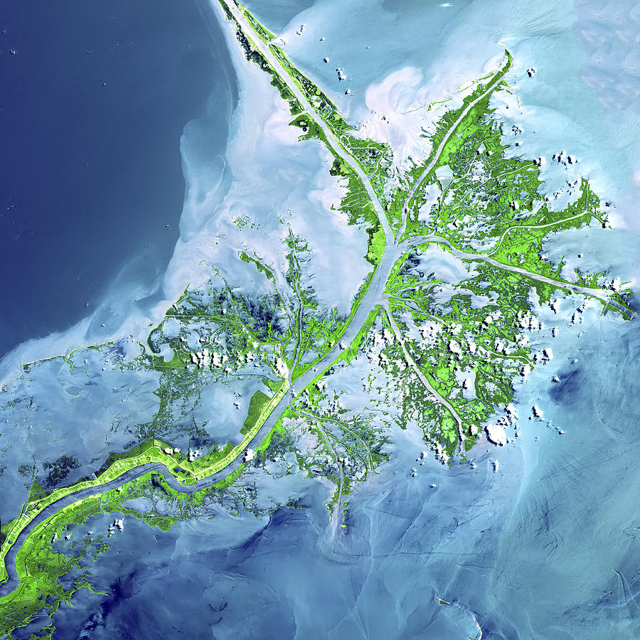 Mississippi River Delta Photograph