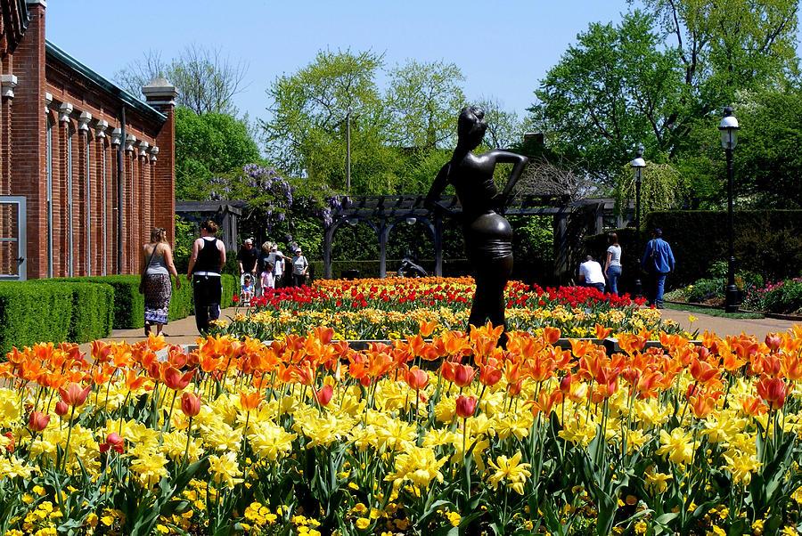 Missouri Botanical Garden Photograph