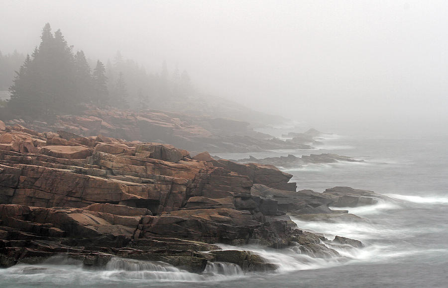 Misty Acadia National Park Seacoast Photograph  - Misty Acadia National Park Seacoast Fine Art Print