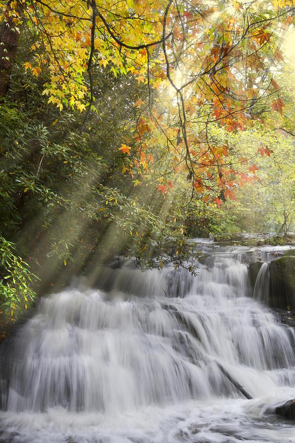Appalachia Photograph - Misty Falls At Coker Creek by Debra and Dave Vanderlaan