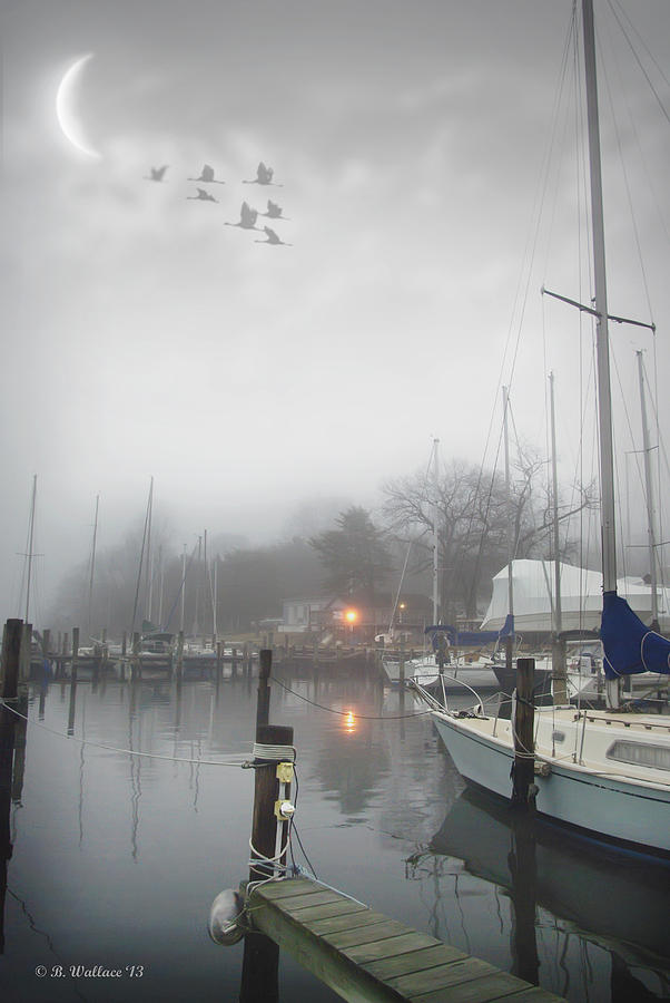 Misty Harbor Lights Photograph  - Misty Harbor Lights Fine Art Print