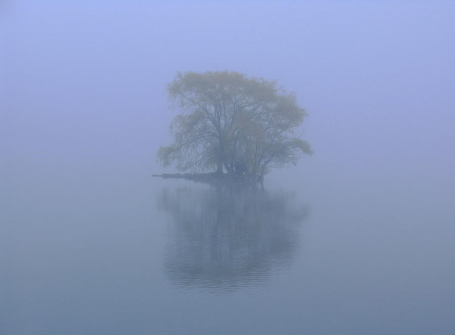 Misty Morning At Jamaica Pond Photograph