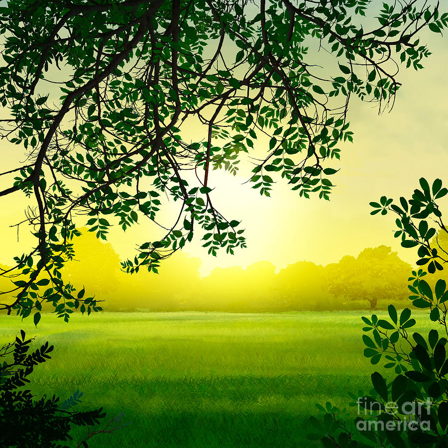 Misty Morning Digital Art