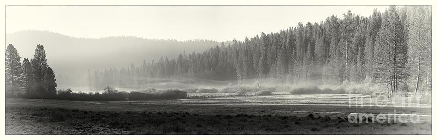Yosemite Photograph - Misty Morning In Yosemite Sepia by Jane Rix