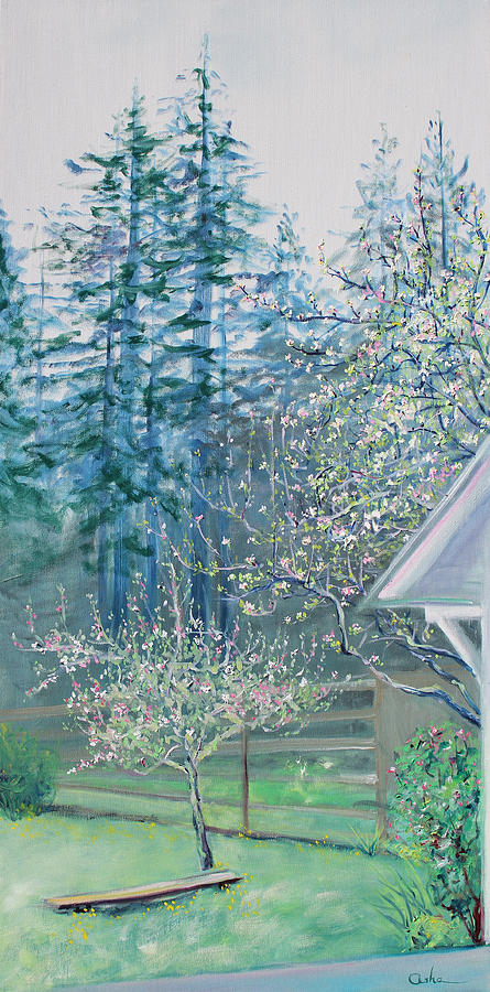 Misty Morning With Apple Blossoms And Redwoods Painting  - Misty Morning With Apple Blossoms And Redwoods Fine Art Print