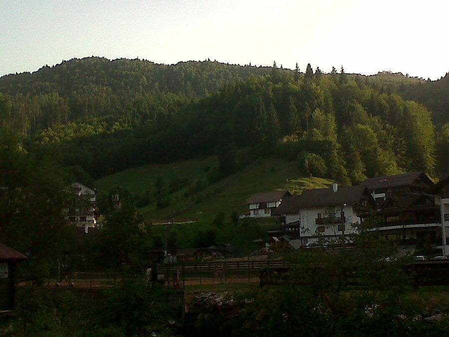 Moeciu Landscape Photograph