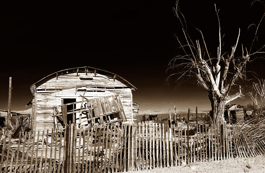 Mojave House Photograph