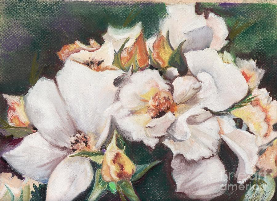 Moment Of A Wild Rose Pastel  - Moment Of A Wild Rose Fine Art Print