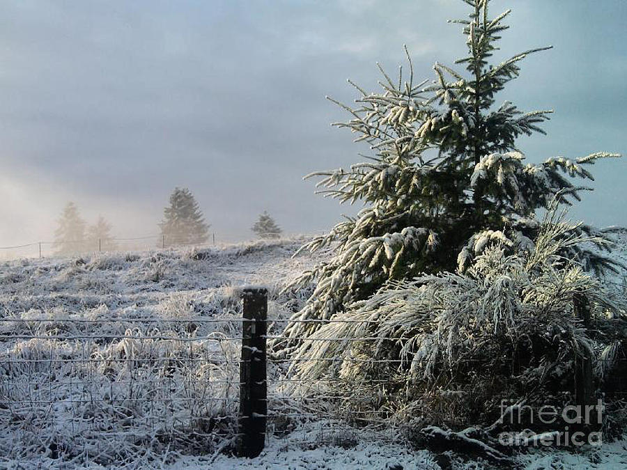 Landscape Photograph - Moment Of Peace by Rory Sagner