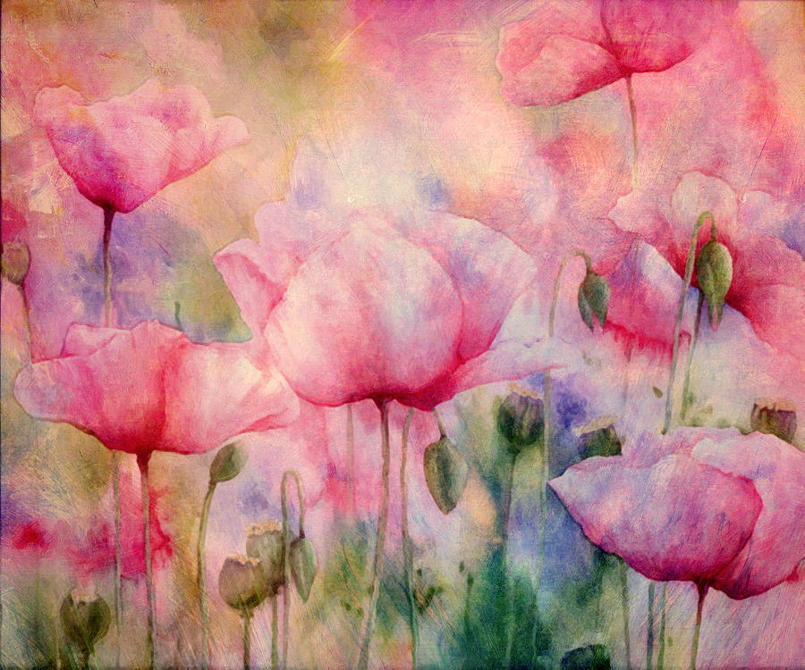 Monets Poppies Vintage Warmth Painting