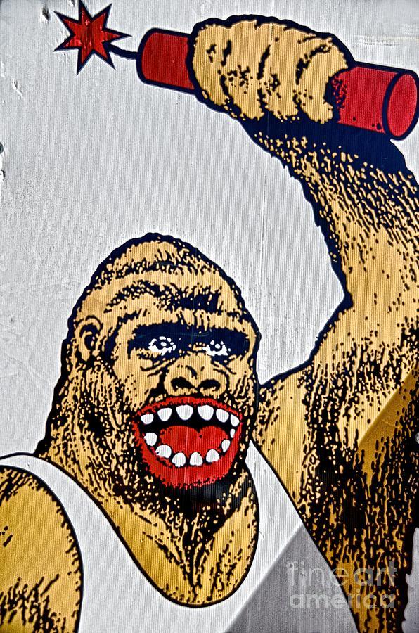 Monkey Around Photograph