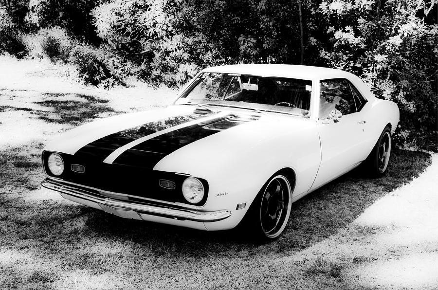 Monochrome Camaro Photograph