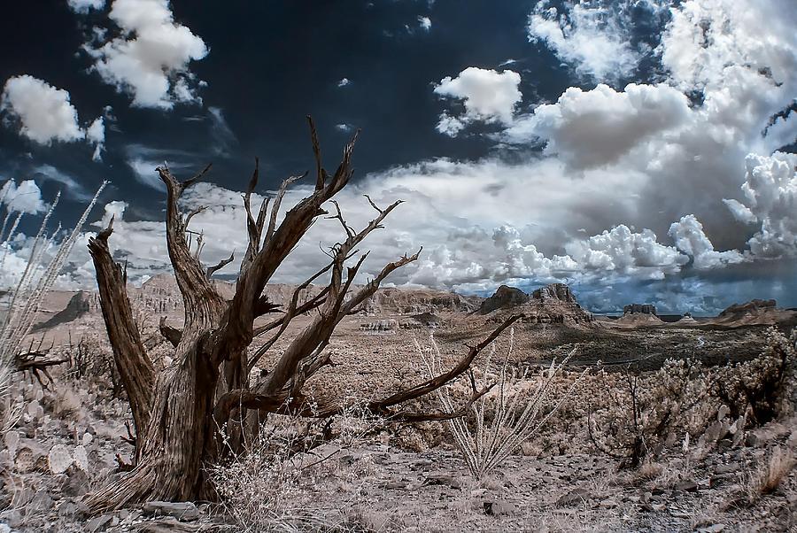 Monsoon Weather Photograph
