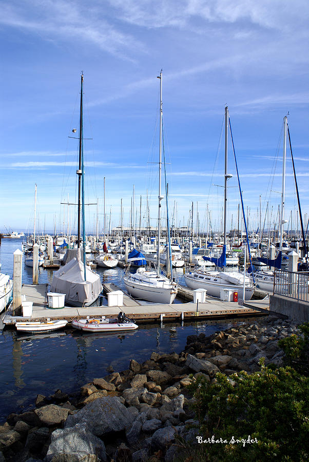 Monterey Harbor California Photograph  - Monterey Harbor California Fine Art Print