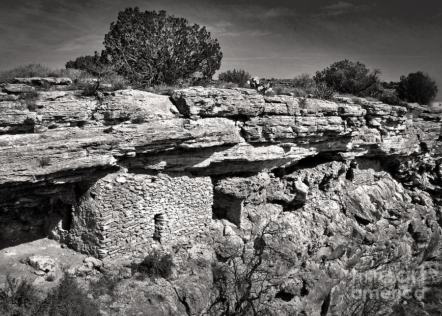 Montezumas Well Photograph  - Montezumas Well Fine Art Print