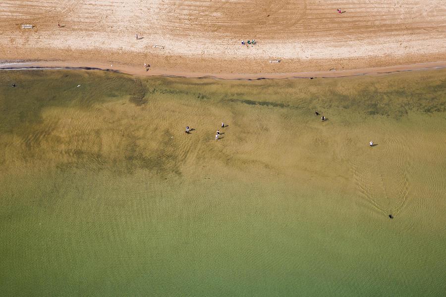 3scape Photos Photograph - Montrose Beach Dog Park by Adam Romanowicz
