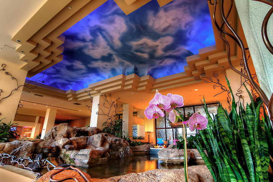 moody gardens hotel photograph by tim stanley