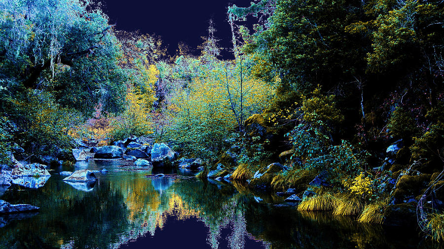 Moss Digital Art - Moon Land by David Walker