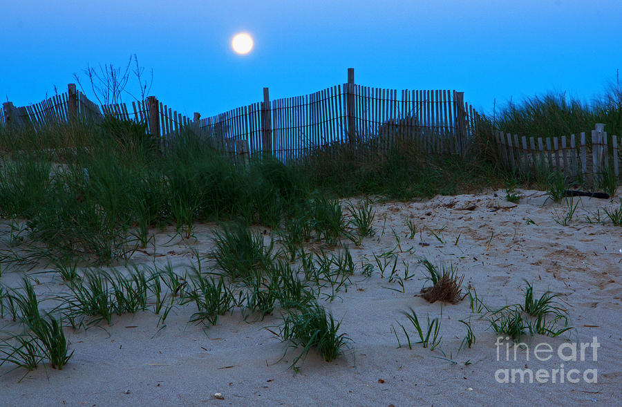 Moon Setting At Beach Plum Island Photograph