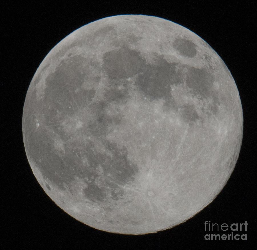 Moon Shot Photograph