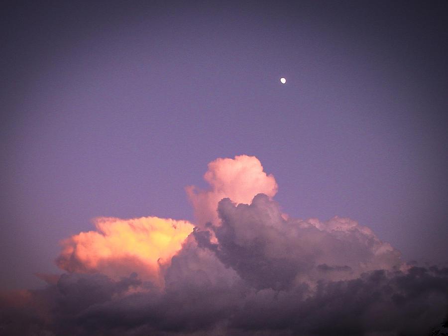 Sky Photograph - Moon Speck by Robert J Andler