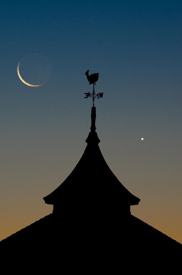 Moon Whale Venus. Photograph