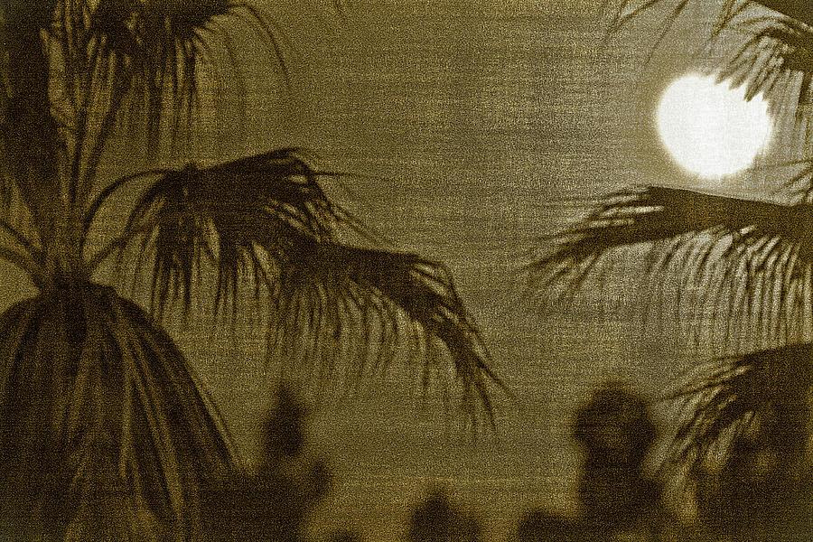 Moons Glow Photograph