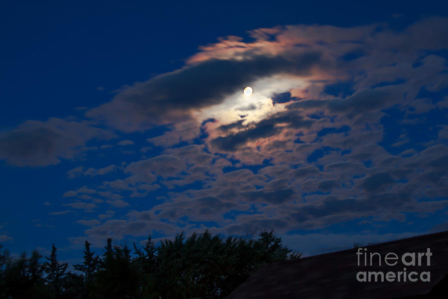 Moon Photograph - Moonscape by Robert Bales