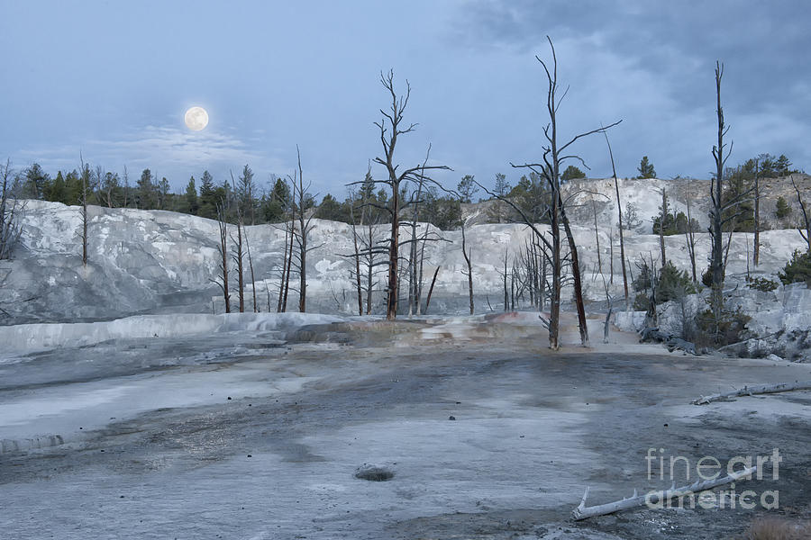 Yellowstone Photograph - Moonset At Mammoth Terrace-yellowstone by Sandra Bronstein