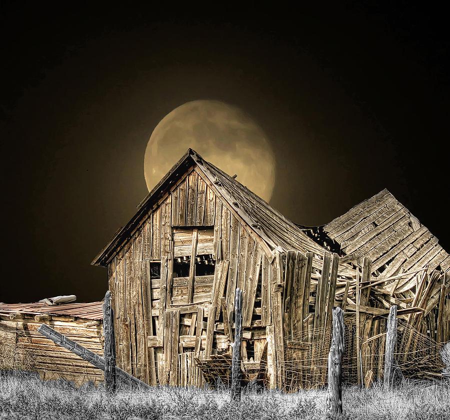 Full Moon Photograph - Moonshine by Stellina Giannitsi