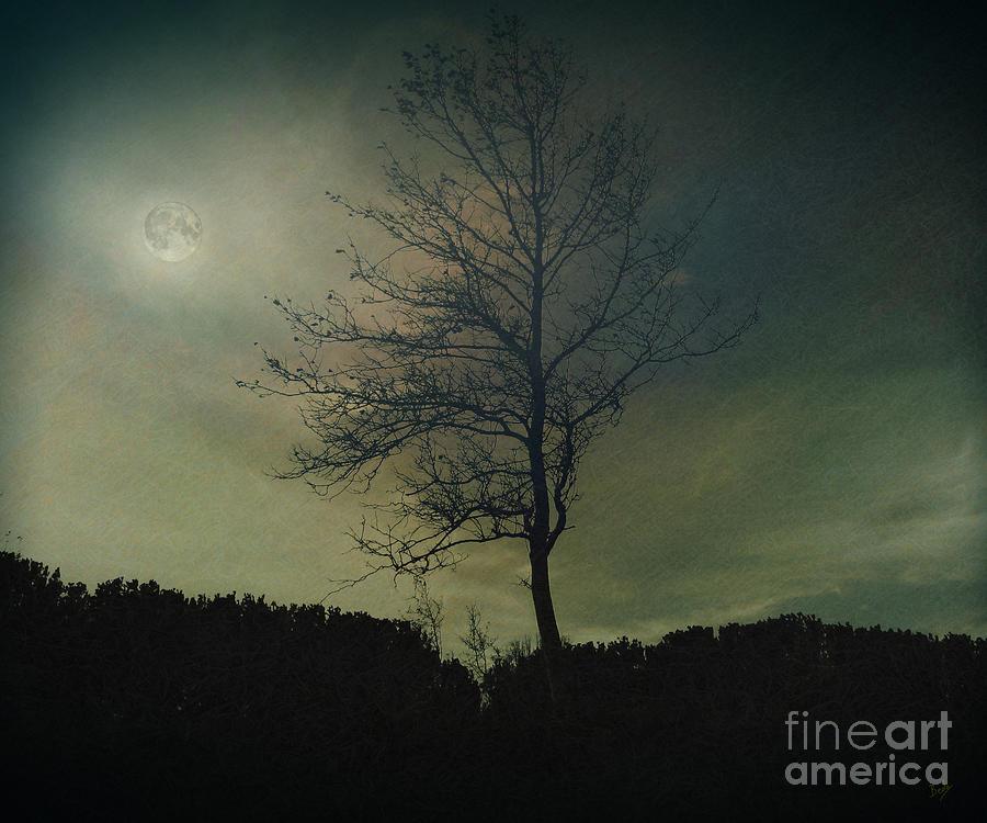 Moonspell Photograph