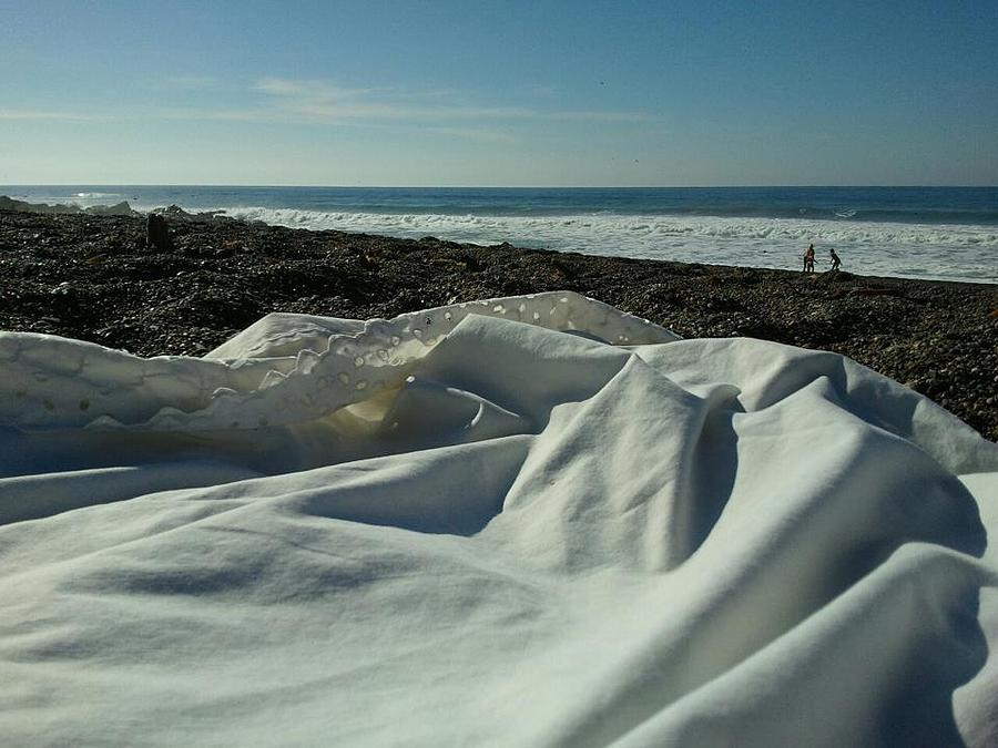 Moonstone Beach Photograph