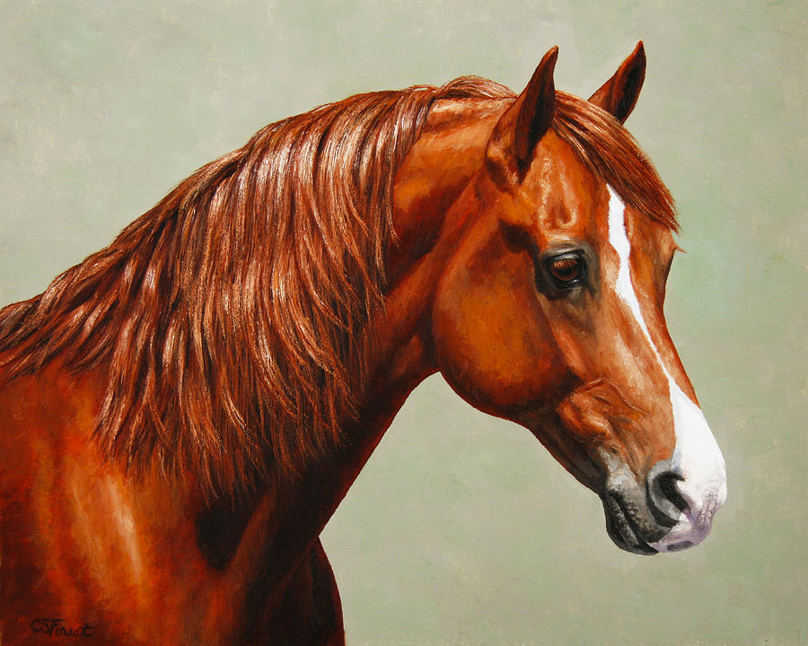 Horse Painting - Morgan Horse - Flame by Crista Forest