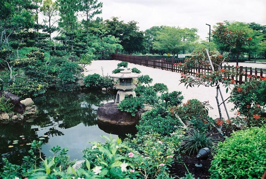 Morikami Gardens Photograph