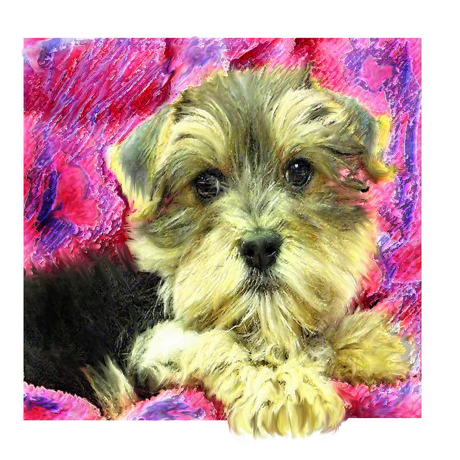 Morkie Puppy Digital Art