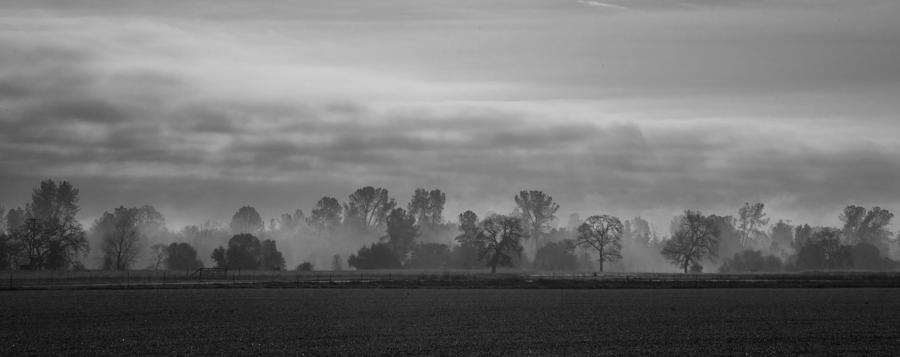 Morning Fog Panorama Bw Photograph  - Morning Fog Panorama Bw Fine Art Print