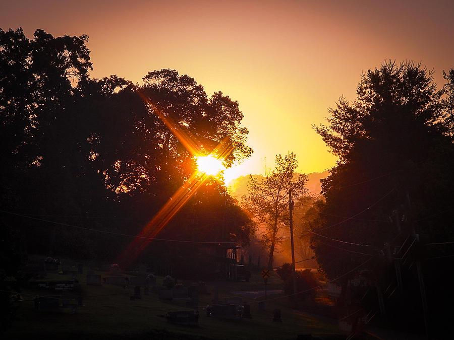 Morning Glare Photograph