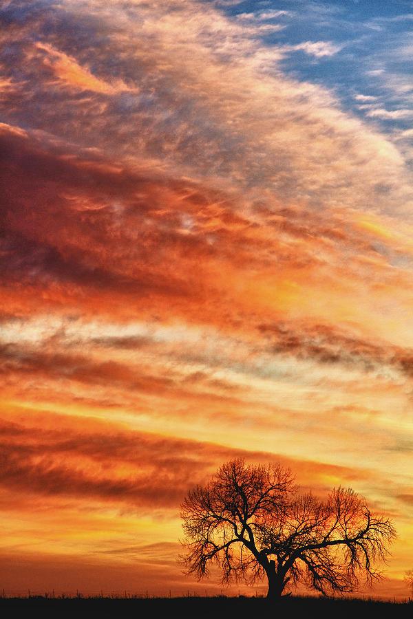 Sunrises Photograph - Morning Has Broken by James BO  Insogna