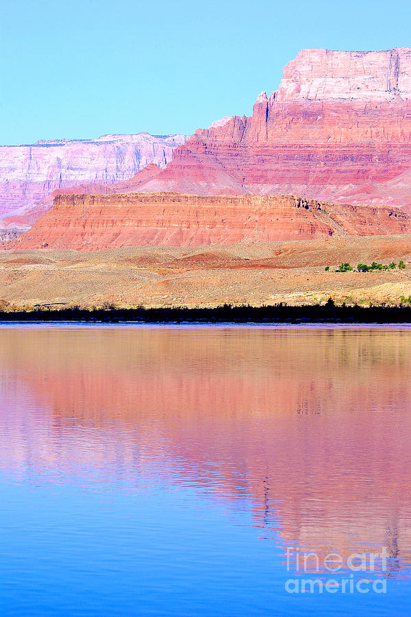 Morning Light - Vermillion Cliffs And Colorado River Photograph