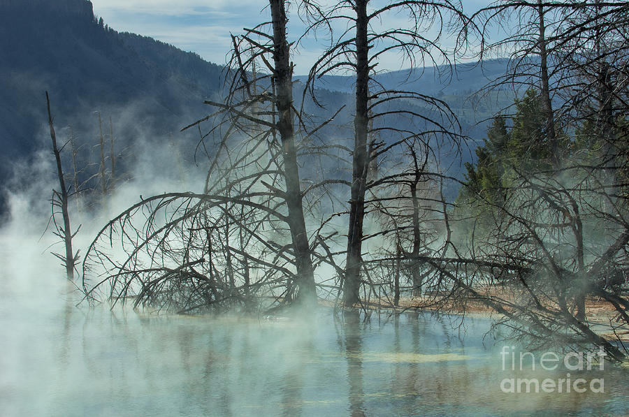 Morning Mist At Mammoth Hot Springs Photograph  - Morning Mist At Mammoth Hot Springs Fine Art Print