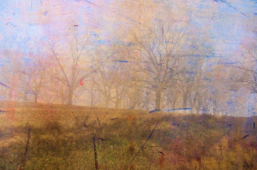 Abstracts Photograph - Morning Mist by Jan Amiss Photography
