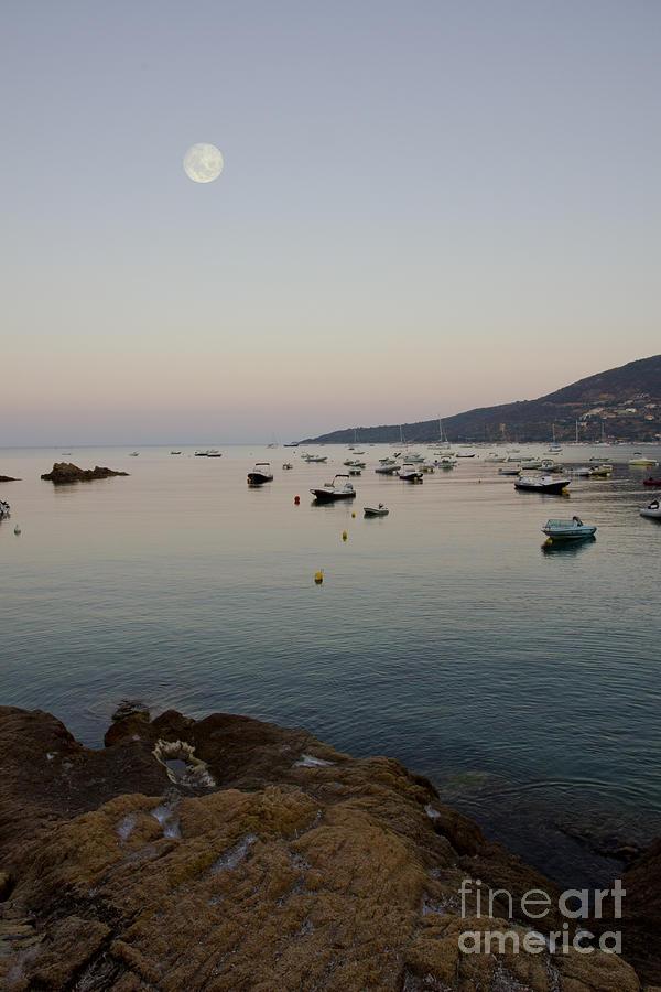 Morning Moon Photograph