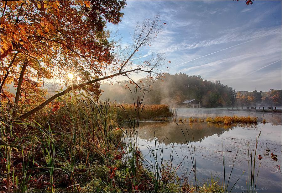 Sunrise Photograph - Morning Sun by Daniel Behm
