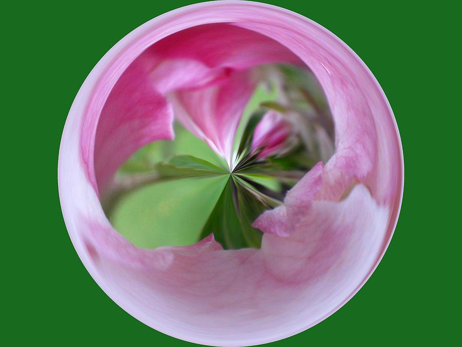 Photo Photograph - Morphed Art Globe 11 by Rhonda Barrett