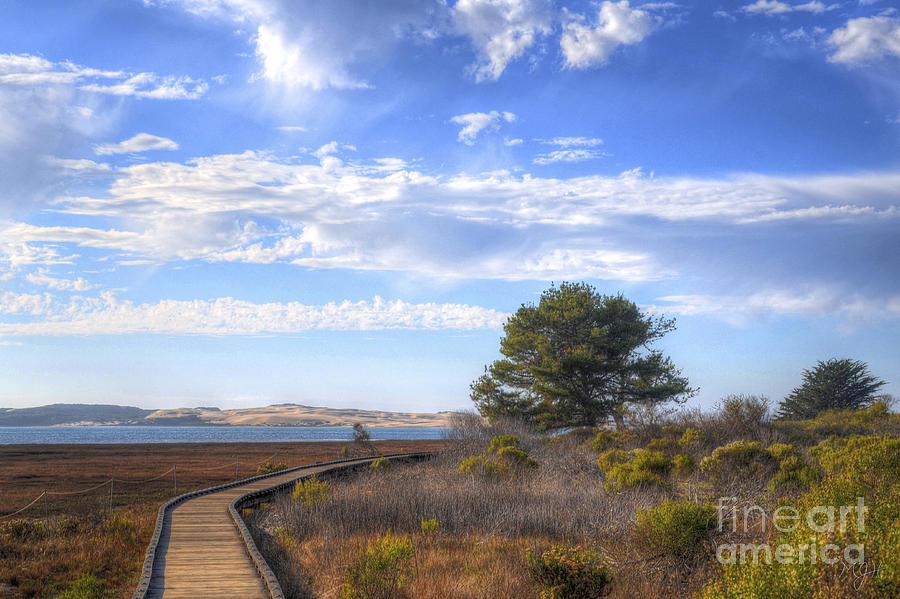 Morro Bay Boardwalk Photograph