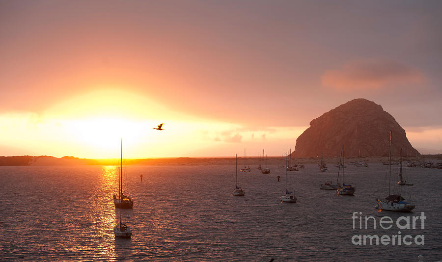 Morro Bay Rock At Sunset Photograph