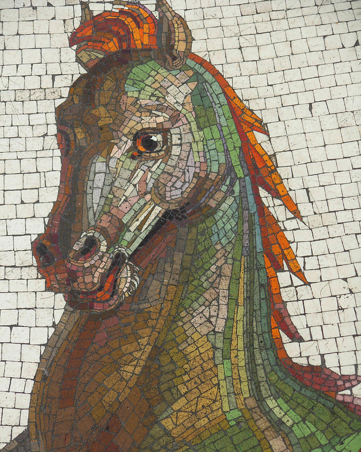 Horse Photograph - Mosaic Horse by Marcia Socolik