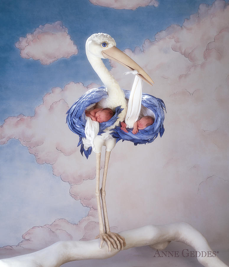 Mother Stork Photograph  - Mother Stork Fine Art Print