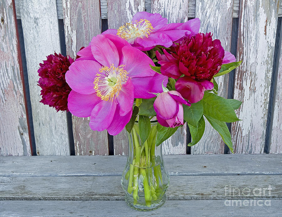 Mothers Day Bouquet Photograph  - Mothers Day Bouquet Fine Art Print