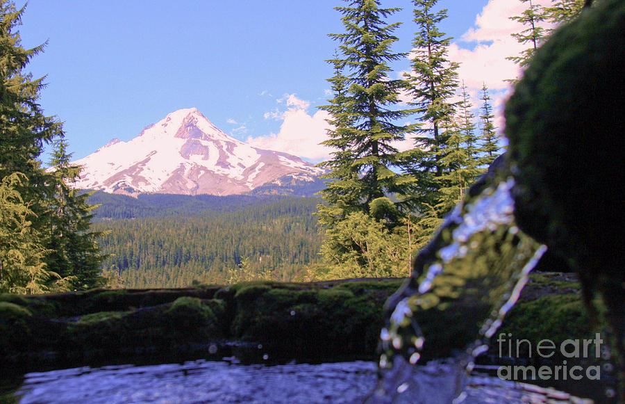 Mount Hood From Buzzard Point Photograph